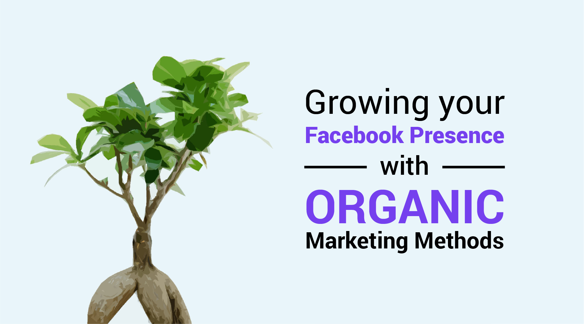 Facebook, Business page, organic marketing