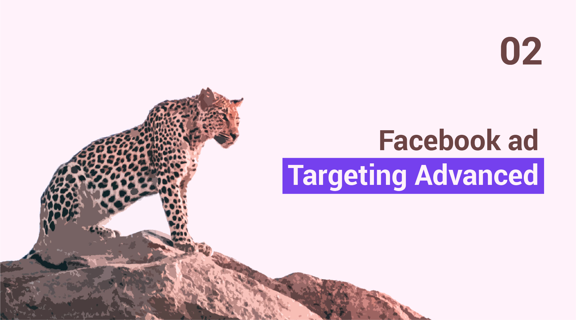 Advanced Guide to Facebook Ad Targeting